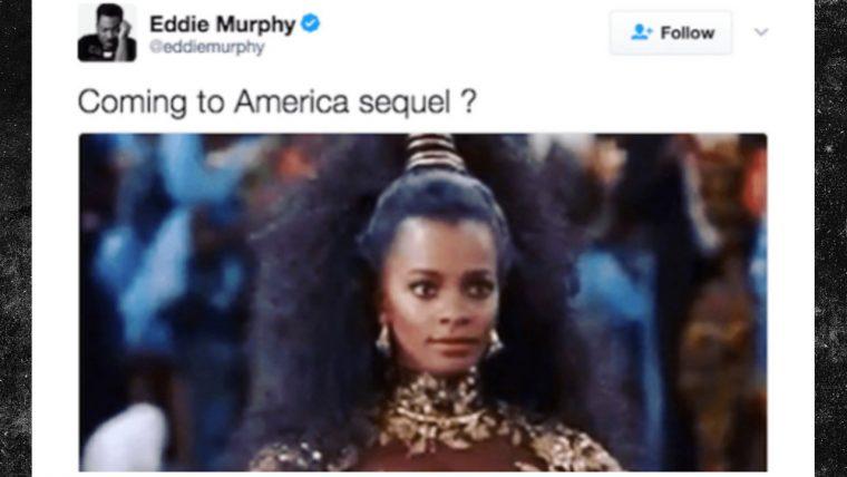 tuite-murphy
