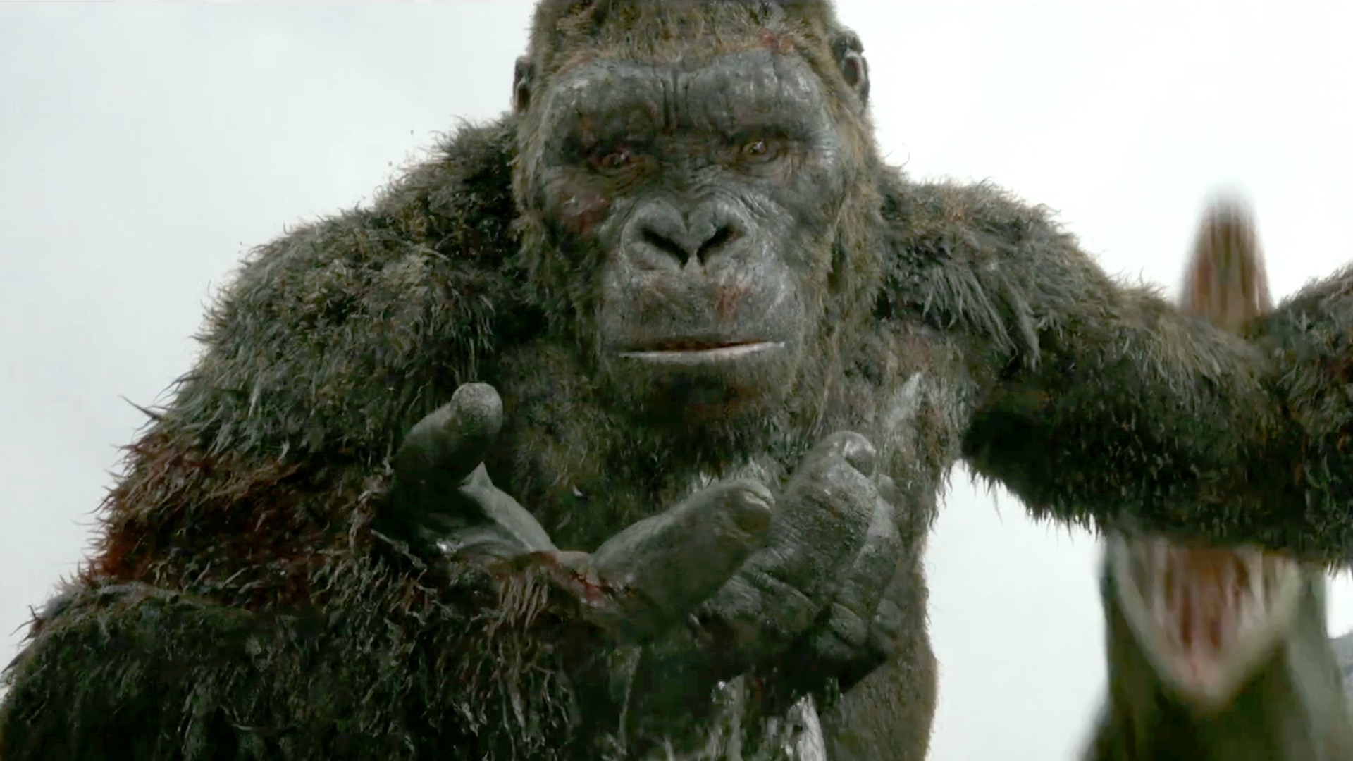 Is Kong Skull Island Suitable For Epilepsy