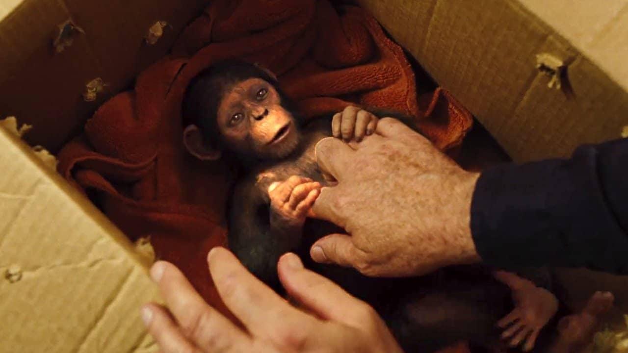 Planeta dos Macacos: A Guerra | Relembre os eventos que levaram ...