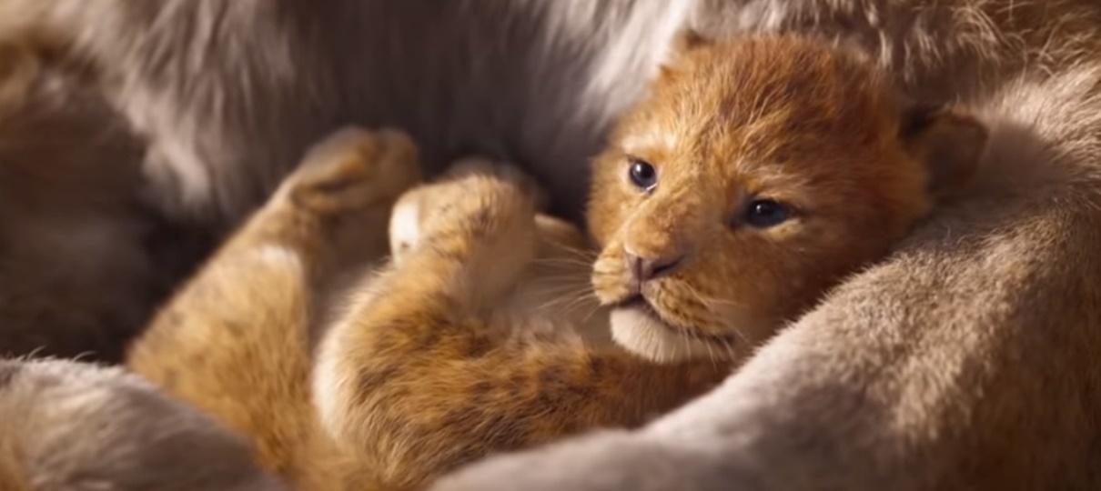 Tem Na Web - Contemple o Ciclo sem Fim no primeiro trailer do live-action de O Rei Leão
